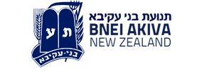 Bnei Akiva New Zealand